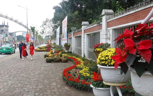 Rực rỡ đường hoa thành phố Vinh những ngày áp tết ảnh 8