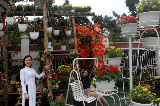 Rực rỡ đường hoa thành phố Vinh những ngày áp tết ảnh 7