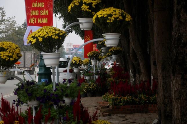 Rực rỡ đường hoa thành phố Vinh những ngày áp tết ảnh 12