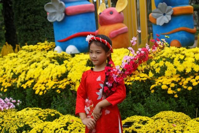 Rực rỡ đường hoa thành phố Vinh những ngày áp tết ảnh 10