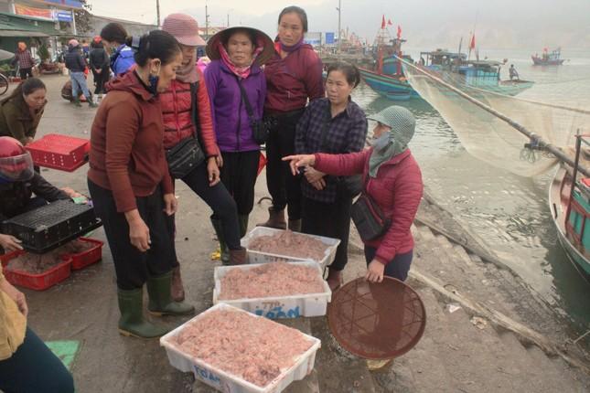 Ngư dân Hà Tĩnh hốt 'lộc trời' đầu năm, kiếm tiền triệu sau vài giờ ra khơi ảnh 1