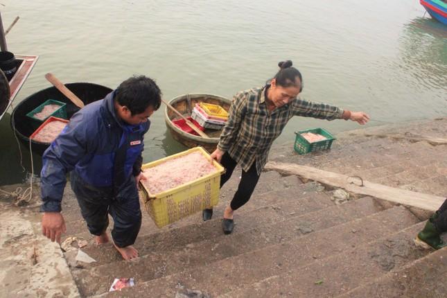 Ngư dân Hà Tĩnh hốt 'lộc trời' đầu năm, kiếm tiền triệu sau vài giờ ra khơi ảnh 2