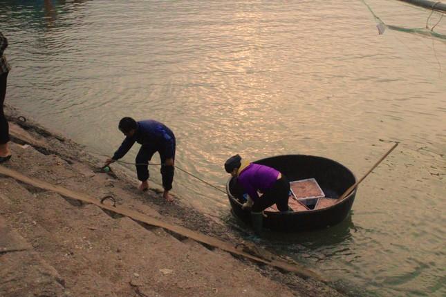 Ngư dân Hà Tĩnh hốt 'lộc trời' đầu năm, kiếm tiền triệu sau vài giờ ra khơi ảnh 3