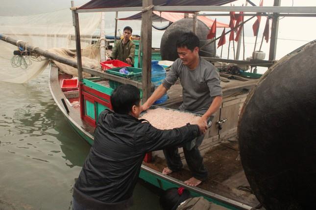 Ngư dân Hà Tĩnh hốt 'lộc trời' đầu năm, kiếm tiền triệu sau vài giờ ra khơi ảnh 4