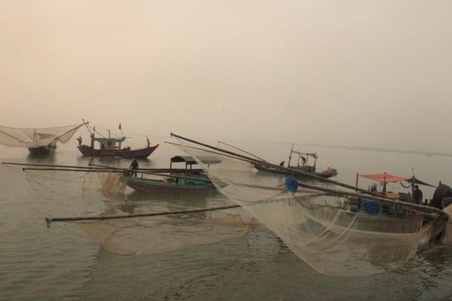 Ngư dân Hà Tĩnh hốt 'lộc trời' đầu năm, kiếm tiền triệu sau vài giờ ra khơi ảnh 8