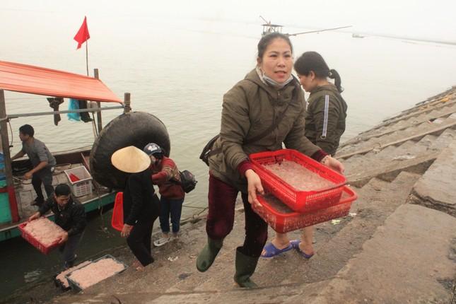 Ngư dân Hà Tĩnh hốt 'lộc trời' đầu năm, kiếm tiền triệu sau vài giờ ra khơi ảnh 7