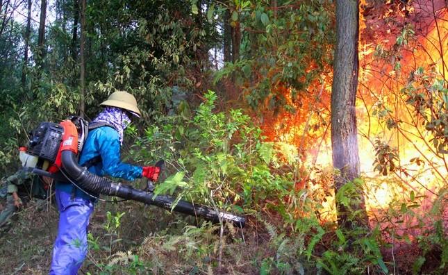 Hơn 1000 người đang căng mình dập đám cháy rừng lan rộng ở Nghệ An ảnh 3