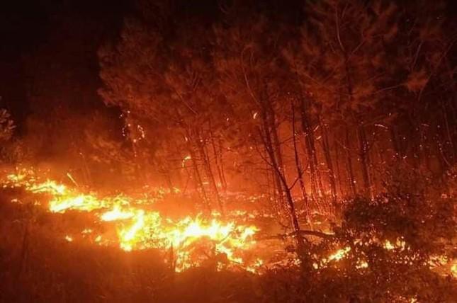 Hơn 1000 người đang căng mình dập đám cháy rừng lan rộng ở Nghệ An ảnh 1