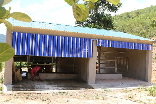 Chi tiết kỹ thuật và đơn giá của 67 chuồng bò 'hạng sang' tại Nghệ An ảnh 3