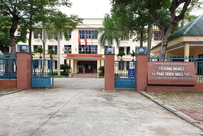 Sở NN&PTNT Nghệ An phớt lờ chỉ đạo của UBND tỉnh ảnh 1