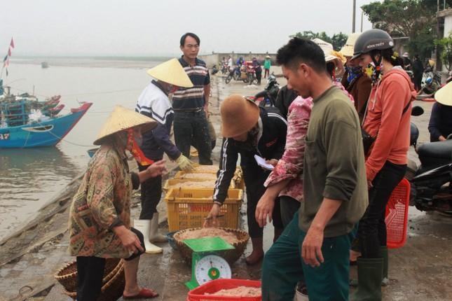 Cảng cá Hà Tĩnh tấp nập người bán, kẻ mua giữa mùa dịch COVID - 19 ảnh 9