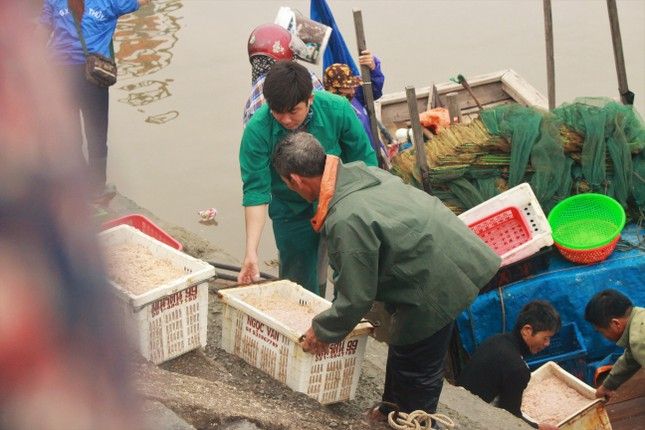 Cảng cá Hà Tĩnh tấp nập người bán, kẻ mua giữa mùa dịch COVID - 19 ảnh 4