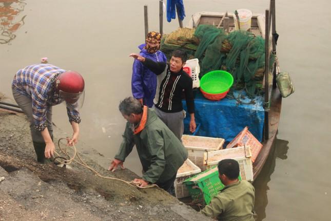 Cảng cá Hà Tĩnh tấp nập người bán, kẻ mua giữa mùa dịch COVID - 19 ảnh 14