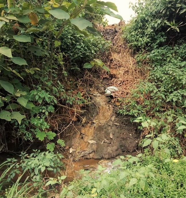 Nơm nớp lo chất thải từ trại lợn 'bức tử' dòng nước đầu nguồn ảnh 1