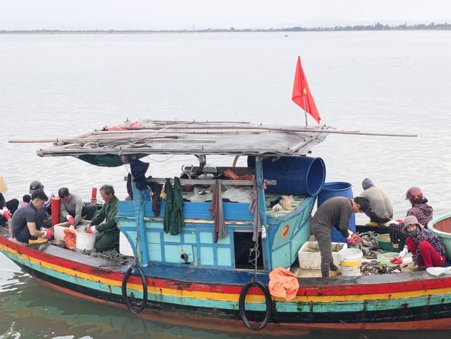 Trúng đậm 'lộc trời', ngư dân Hà Tĩnh kiếm tiền triệu mỗi ngày ảnh 1