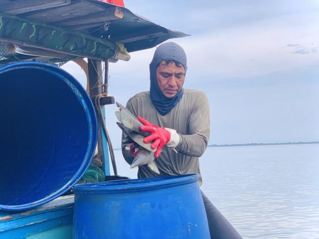 Trúng đậm 'lộc trời', ngư dân Hà Tĩnh kiếm tiền triệu mỗi ngày ảnh 13