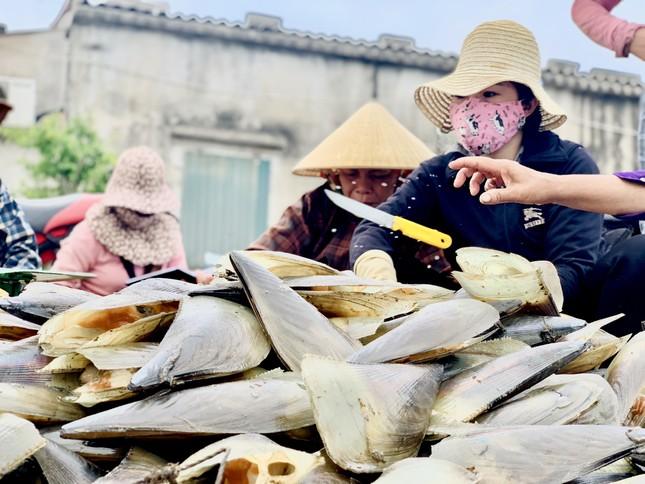 Trúng đậm 'lộc trời', ngư dân Hà Tĩnh kiếm tiền triệu mỗi ngày ảnh 9