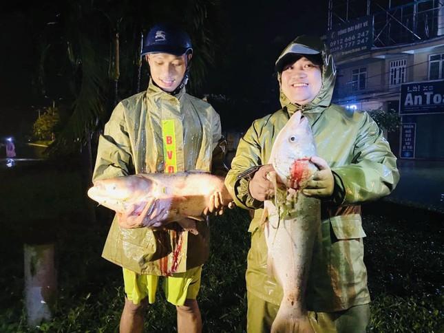 Nước lũ dâng cao, người dân Hà Tĩnh mang nơm ra đường bắt cá ảnh 7
