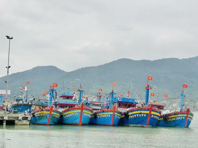 Ngư dân 'hốt bạc' nhờ lộc biển ngày cuối năm ảnh 1