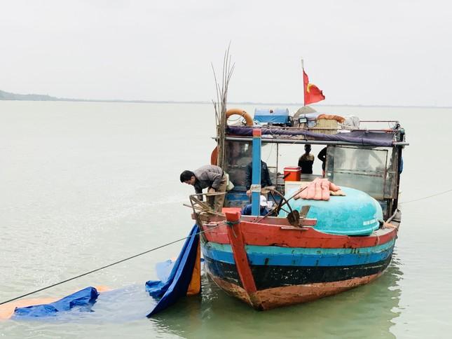 Ngư dân 'hốt bạc' nhờ lộc biển ngày cuối năm ảnh 4