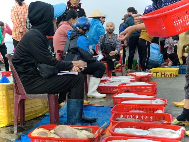 Vươn khơi đầu năm, ngư dân phấn khởi trúng đậm tôm, cá ảnh 9