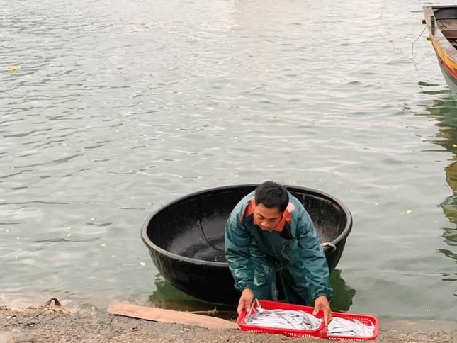 Vươn khơi đầu năm, ngư dân phấn khởi trúng đậm tôm, cá ảnh 10