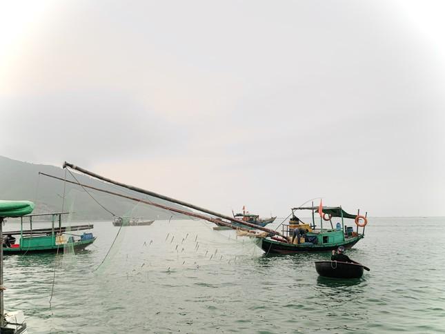 Vươn khơi đầu năm, ngư dân phấn khởi trúng đậm tôm, cá ảnh 7