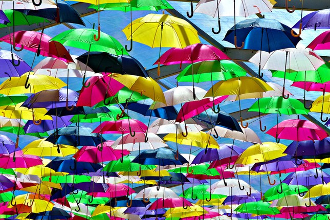 Chùm ảnh về những lễ hội độc đáo và nhiều màu sắc nhất thế giới ảnh 4