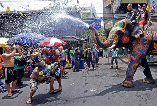 Chùm ảnh về những lễ hội độc đáo và nhiều màu sắc nhất thế giới ảnh 13