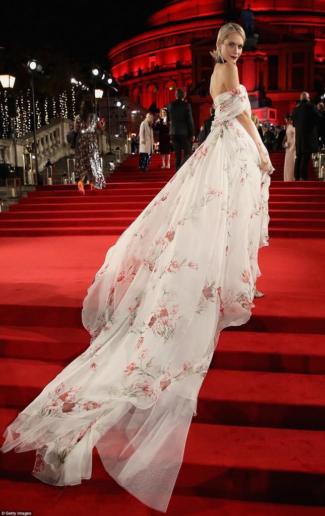 Dàn mỹ nhân khoe sắc quyến rũ với váy áo lộng lẫy ảnh 17