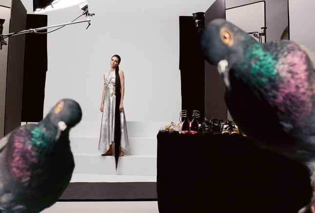 'Chân dài' đắt giá nhất thế giới táo bạo cởi áo che ngực trần ảnh 11