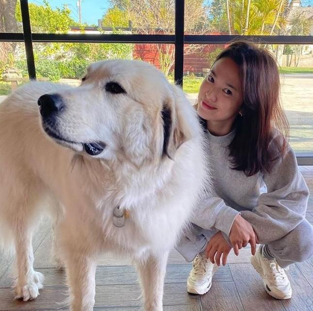 Song Hye Kyo lộ diện sau khi trở về từ tâm dịch Milan nước Ý ảnh 1