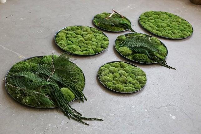 Nữ nghệ sĩ làm tranh tường độc đáo từ cây cỏ thiên nhiên ảnh 7