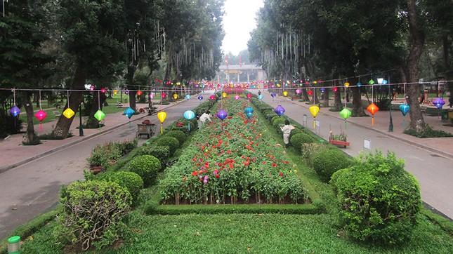 Độc đáo 12 con giáp bằng cây hoa nghệ thuật trong công viên Thống Nhất ảnh 12