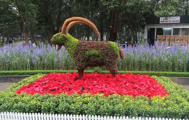 Độc đáo 12 con giáp bằng cây hoa nghệ thuật trong công viên Thống Nhất ảnh 11