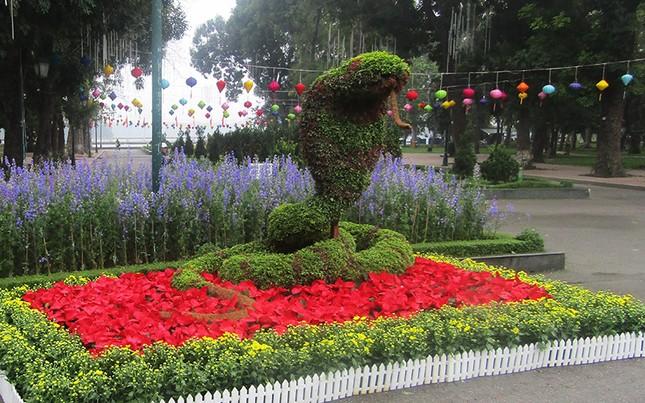 Độc đáo 12 con giáp bằng cây hoa nghệ thuật trong công viên Thống Nhất ảnh 2
