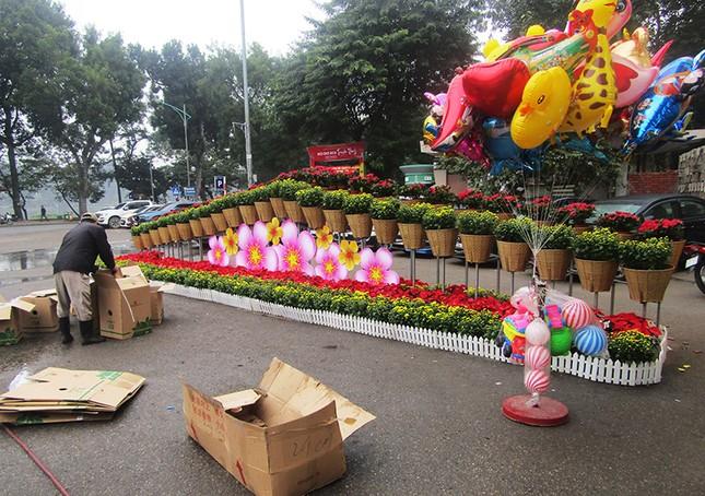 Độc đáo 12 con giáp bằng cây hoa nghệ thuật trong công viên Thống Nhất ảnh 15