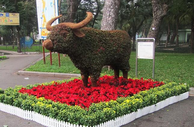 Độc đáo 12 con giáp bằng cây hoa nghệ thuật trong công viên Thống Nhất ảnh 4