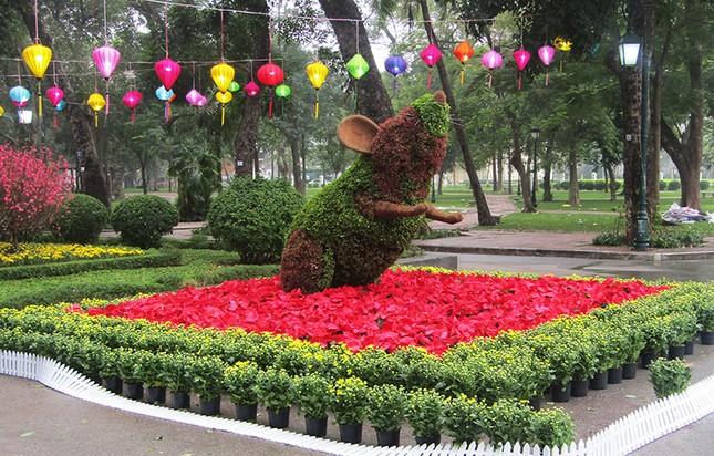 Độc đáo 12 con giáp bằng cây hoa nghệ thuật trong công viên Thống Nhất ảnh 5