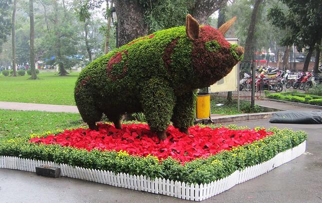 Độc đáo 12 con giáp bằng cây hoa nghệ thuật trong công viên Thống Nhất ảnh 6