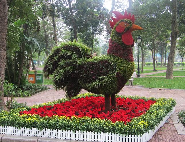 Độc đáo 12 con giáp bằng cây hoa nghệ thuật trong công viên Thống Nhất ảnh 7