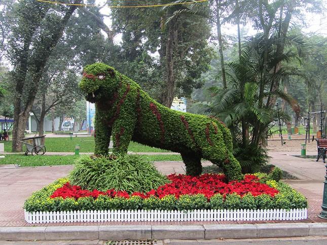 Độc đáo 12 con giáp bằng cây hoa nghệ thuật trong công viên Thống Nhất ảnh 9