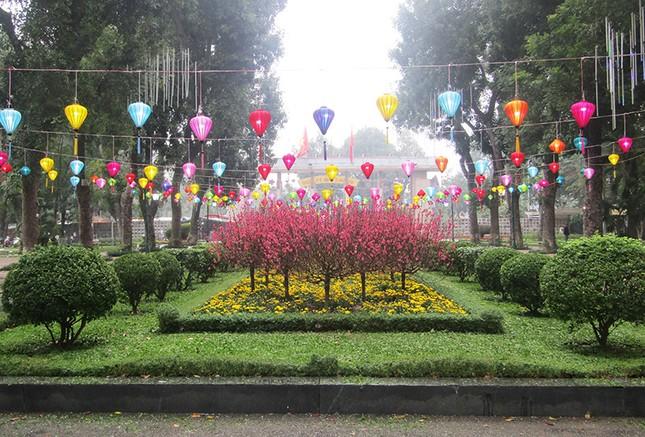 Độc đáo 12 con giáp bằng cây hoa nghệ thuật trong công viên Thống Nhất ảnh 14