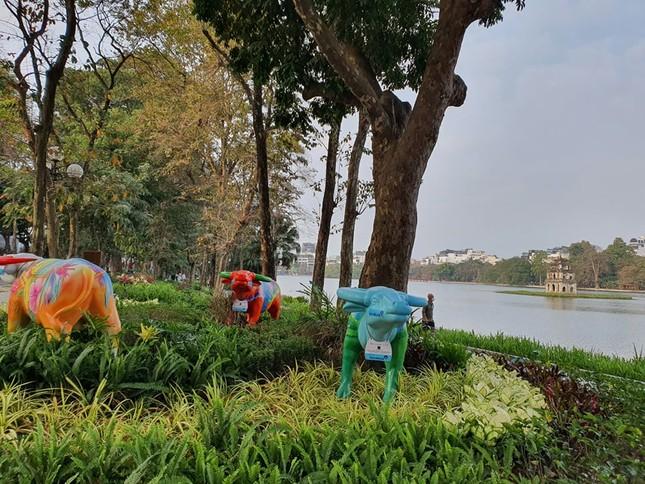 Trâu nghệ thuật 'xuống phố' khiến người dân Thủ đô tò mò thích thú ảnh 6