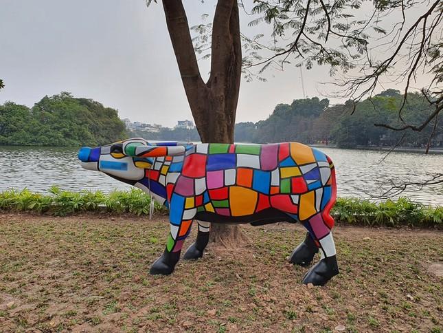 Trâu nghệ thuật 'xuống phố' khiến người dân Thủ đô tò mò thích thú ảnh 4