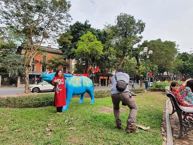Trâu nghệ thuật 'xuống phố' khiến người dân Thủ đô tò mò thích thú ảnh 10