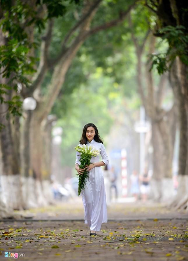Nữ sinh trường Ams tinh khôi bên hoa loa kèn ảnh 2