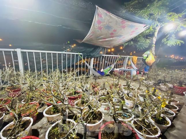 Chợ hoa 'trên bến dưới thuyền' nhộn nhịp về đêm ảnh 18