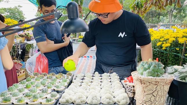Hàng nghìn loại 'kì hoa dị thảo' đổ bộ chợ hoa xuân Sài Gòn ảnh 14