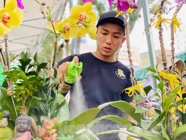 Hàng nghìn loại 'kì hoa dị thảo' đổ bộ chợ hoa xuân Sài Gòn ảnh 26